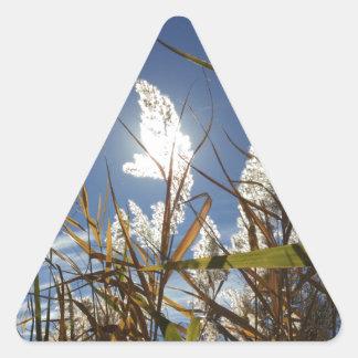 Dazzling Sunlight Theme Triangle Sticker