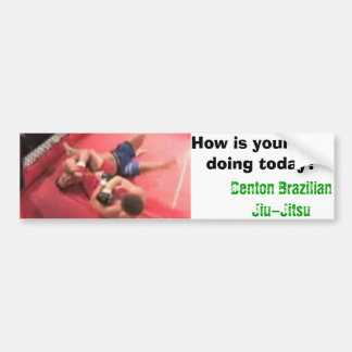 DBJJ, How is your arm doing today? Bumper Stickers
