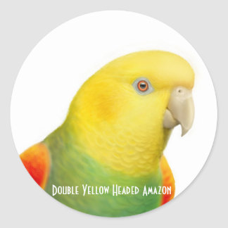 Dbl Yellow Headed Amazon Sticker