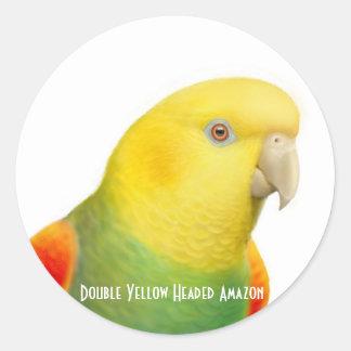 Dbl Yellow Headed Amazon Sticker