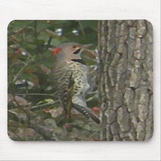 DC- Flicker Woodpecker Bird Mousepad