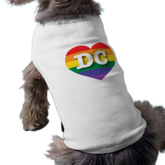 DC Gay Pride Rainbow Heart - Big Love Tee