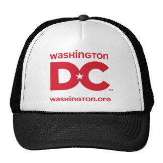 DC logo Hat