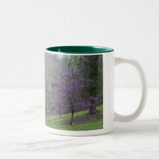 DC Trees Mug