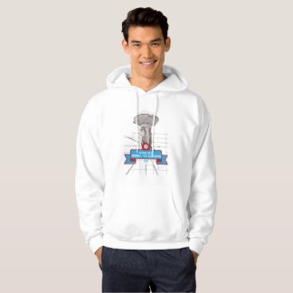 DCSFA hoodie