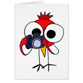 DD- Red Cardinal Bird with Camera Cartoon Card