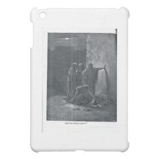 DD&W 020 iPad MINI COVERS