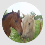De BFF de los mejores amigos caballos para siempre Etiqueta Redonda
