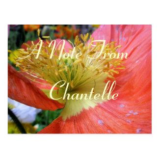De Chantelle Postales