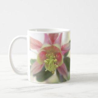 De debajo - la floración de Aquilegia Taza De Café