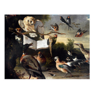 De donde las canciones del pájaro vienen tarjeta postal