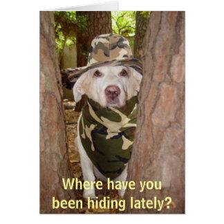 ¿De dónde usted ha estado ocultando últimamente? Tarjeta De Felicitación