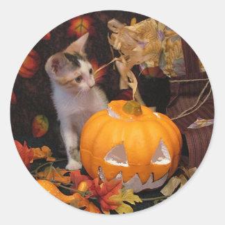 De encaje - gatito de Halloween Etiqueta Redonda