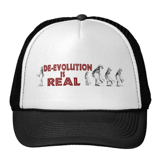 DE-EVOLUTION TRUCKER HAT