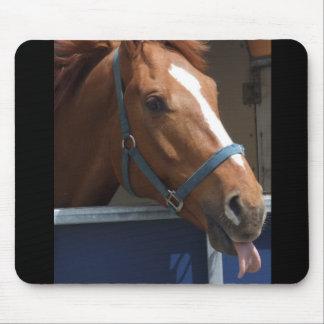 De Horsing caballo fresco de la castaña alrededor Alfombrilla De Raton