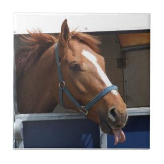 De Horsing caballo fresco de la castaña alrededor Azulejo Cuadrado Pequeño