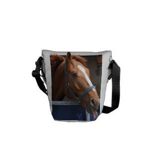 De Horsing caballo fresco de la castaña alrededor Bolsas Messenger
