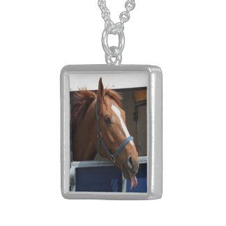 De Horsing caballo fresco de la castaña alrededor Colgante Cuadrado