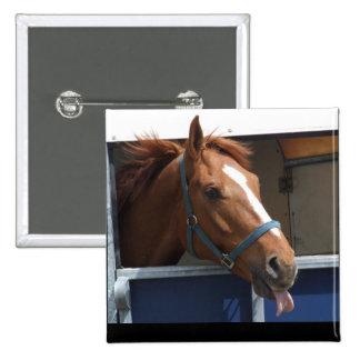 De Horsing caballo fresco de la castaña alrededor Pin Cuadrado