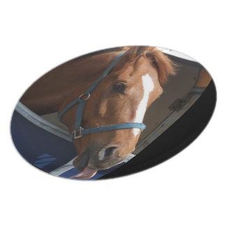De Horsing caballo fresco de la castaña alrededor Plato De Cena