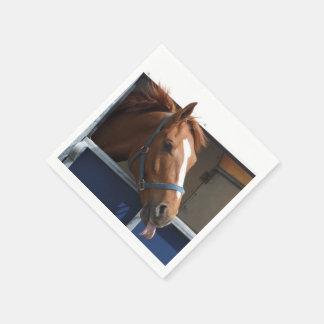 De Horsing caballo fresco de la castaña alrededor Servilleta Desechable