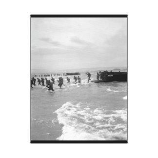 """De """"imagen sea-horse_War Guardia-servida costa Lona Envuelta Para Galerias"""