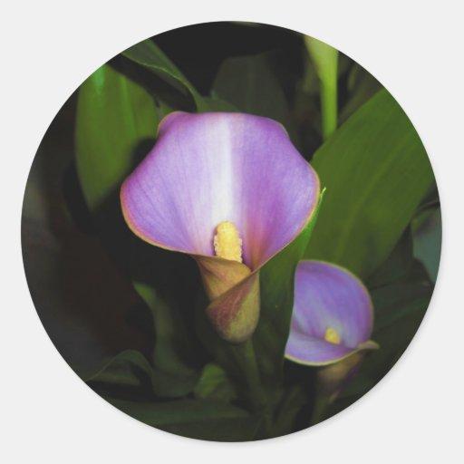 De la cala pegatina lilly