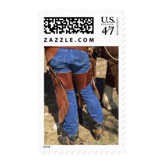 De la cintura opinión abajo el vaquero sellos