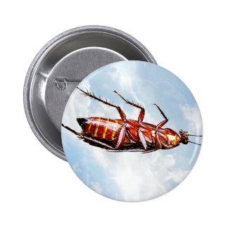 De la cucaracha botón redondo solamente - pin