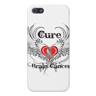 De la curación de cerebro del cáncer del corazón a iPhone 5 carcasa