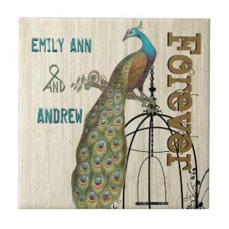 De la jaula de pájaros del pavo real del grano azulejo cuadrado pequeño