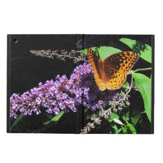 ~ de la mariposa del Fritillary