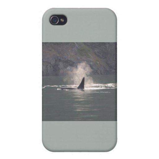De la orca de la ballena de las respiraciones nieb iPhone 4/4S carcasa