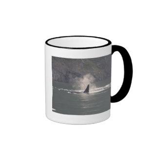 De la orca de la ballena de las respiraciones nieb tazas