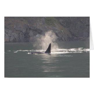 De la orca de la ballena de las respiraciones tarjeta de felicitación