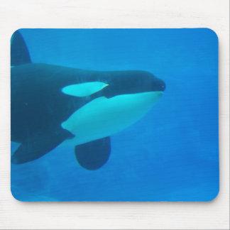 de la orca de la orca azul bajo el agua alfombrilla de raton
