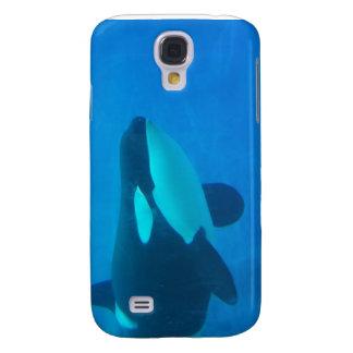 de la orca de la orca azul bajo el agua
