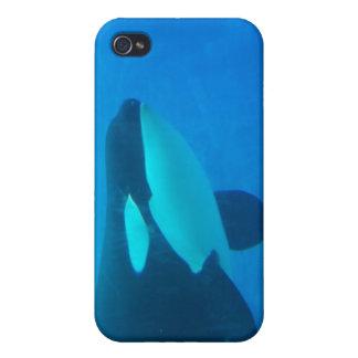 de la orca de la orca azul bajo el agua iPhone 4/4S fundas