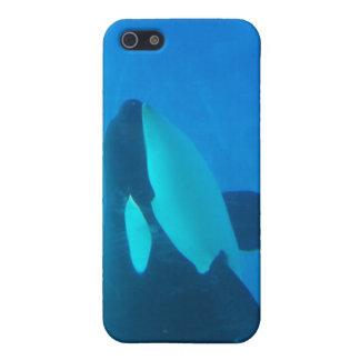 de la orca de la orca azul bajo el agua iPhone 5 carcasas