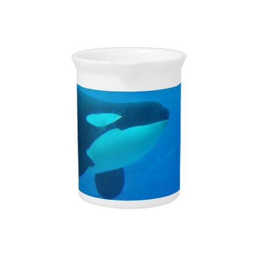 de la orca de la orca azul bajo el agua jarra