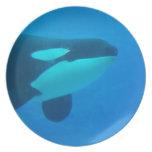 de la orca de la orca azul bajo el agua plato