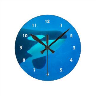 de la orca de la orca azul bajo el agua reloj redondo mediano