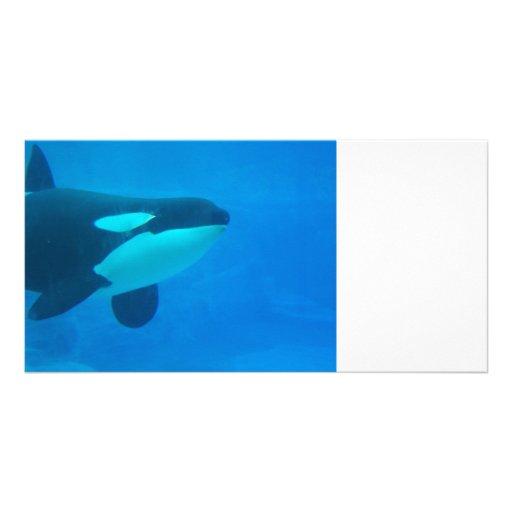 de la orca de la orca azul bajo el agua tarjetas con fotos personalizadas