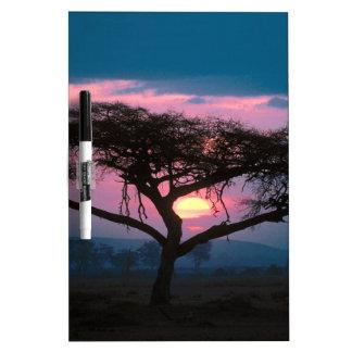 De la puesta del sol africano al este pizarras