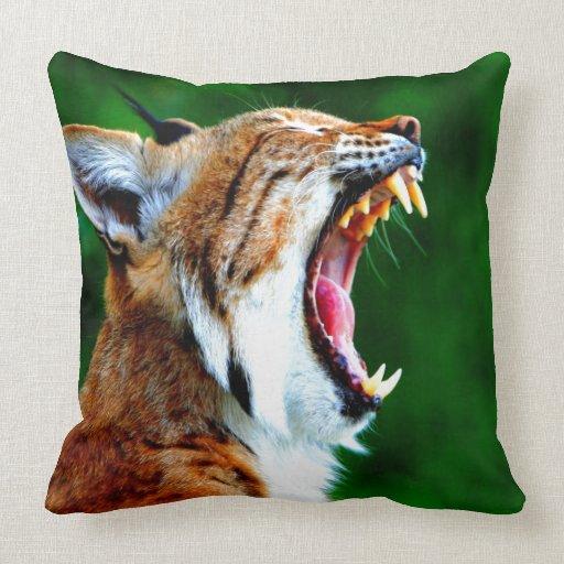 De la risa gato montés ruidoso del lince del lince almohada