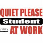 De la tranquilidad estudiante por favor en el trab esculturas fotográficas
