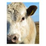 De la vaca cierre para arriba membrete