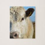 De la vaca cierre para arriba rompecabeza con fotos
