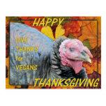 Dé las gracias por veganos tarjetas postales