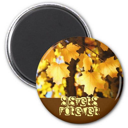 De las hermanas hojas del amarillo de los regalos  imanes para frigoríficos